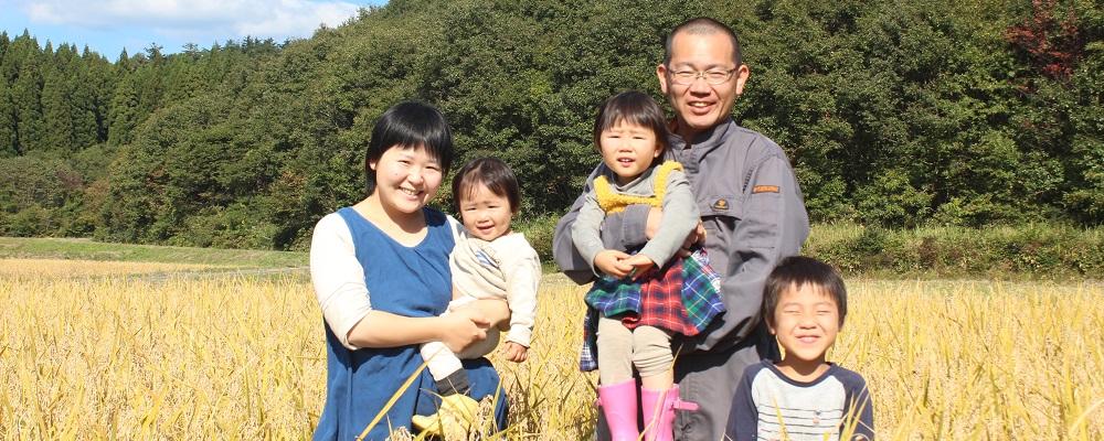【 輪島エコ自然農園(石川県)】    自家採種 (コシヒカリ) 無肥料 完全無農薬 12年目の自然栽培米  当農園は・・・         『 本当に美味しいお米を 自分が食べたいから作って 家族で食べきれない分のお米を、食べたい人だけに、お分けしています。』